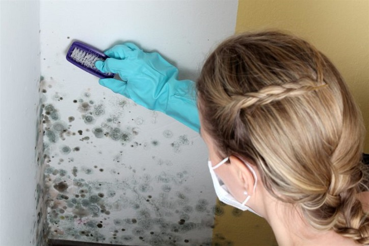 Insurance-Claims-for-Toxic-Mold